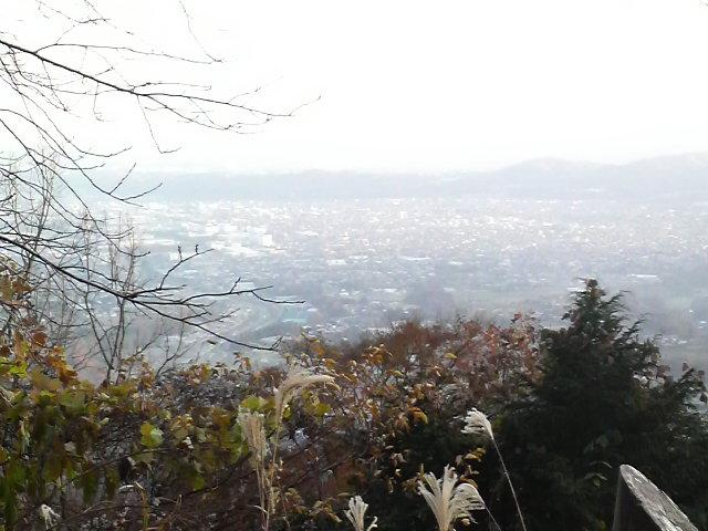 久々に丹沢へ